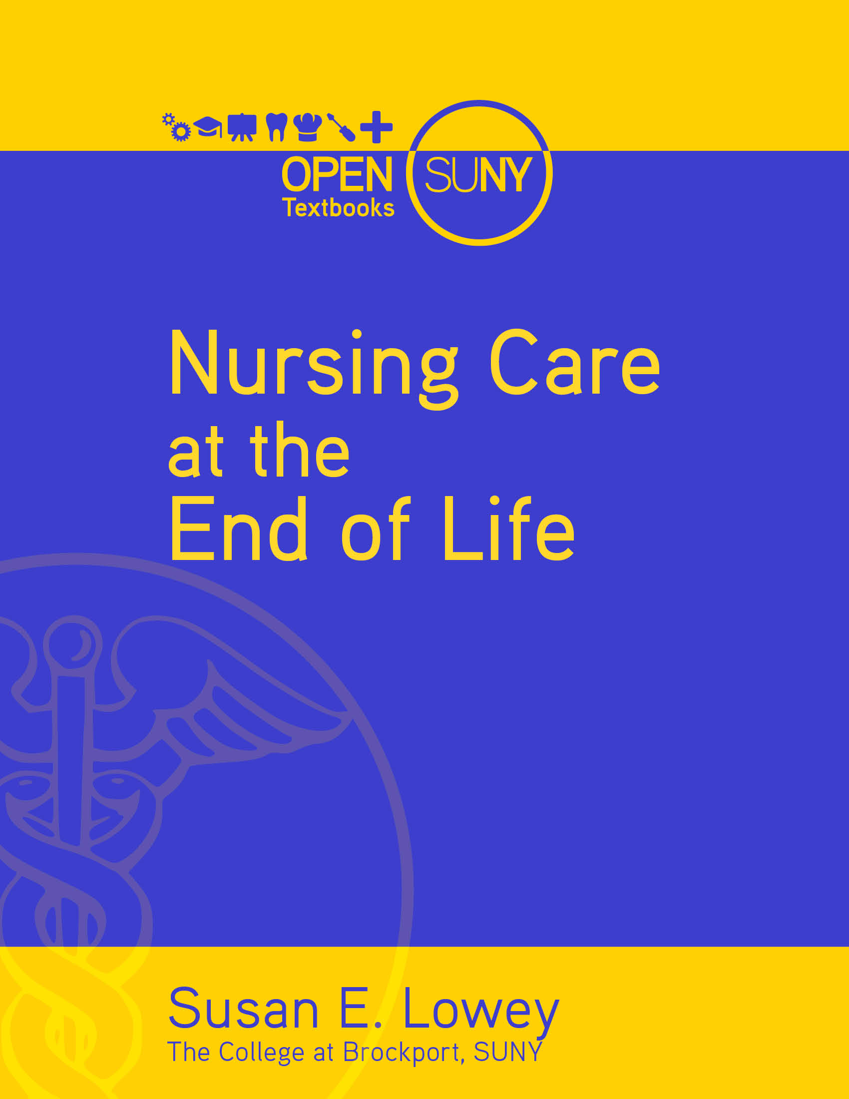 nursing care at the end of life simple book publishing. Black Bedroom Furniture Sets. Home Design Ideas