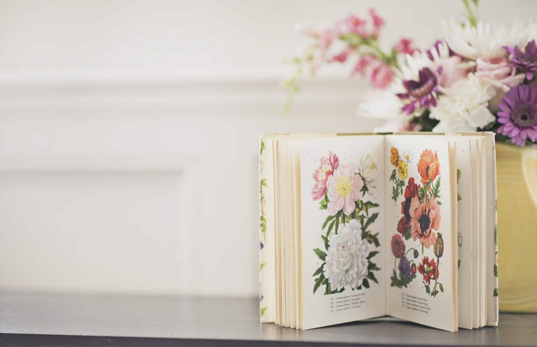book-cover with a vase of flowers